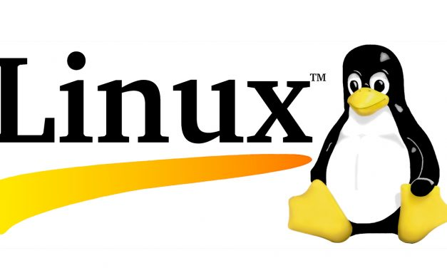 Linux Web Hosting: The Positives and Negatives